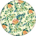 PopSocket - Pretty Pretea