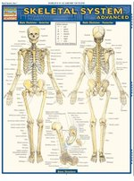 QuickStudy - Study Guide - Skeletal System Advanced